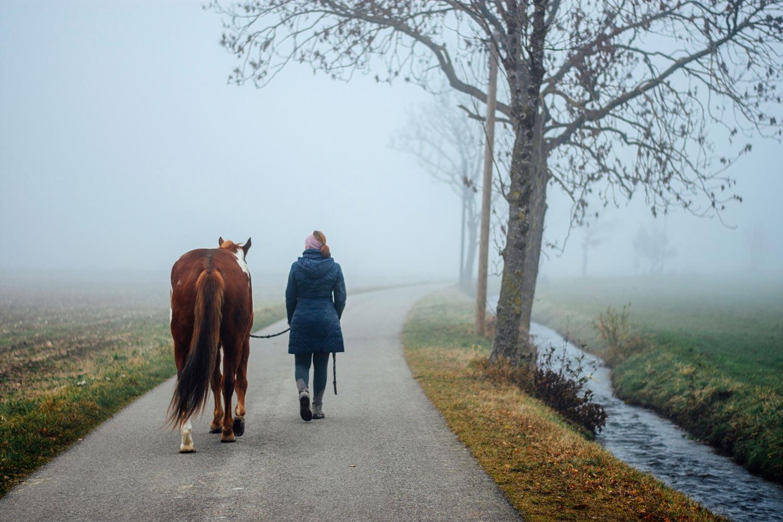 Winterspaziergang mit Pferd | ©Julia Friedl